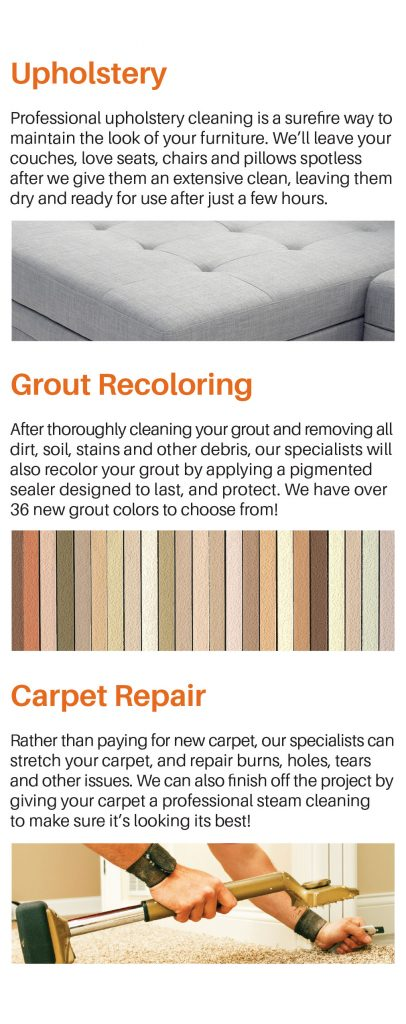 https://www.mycarpetguys.com/wp-content/uploads/2017/05/brochure-page-4-new-406x1024.jpg
