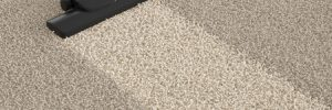 Health Effects of Dirty Carpets