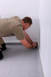 Repairing Carpets