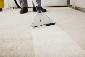 Professional carpet cleaning versus doing it yourself