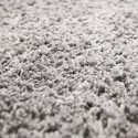Professional Carpet Cleaners in Phoenix, AZ