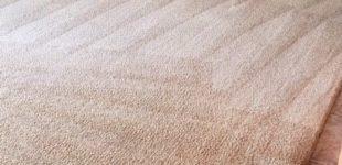 carpet cleaning in phoenix