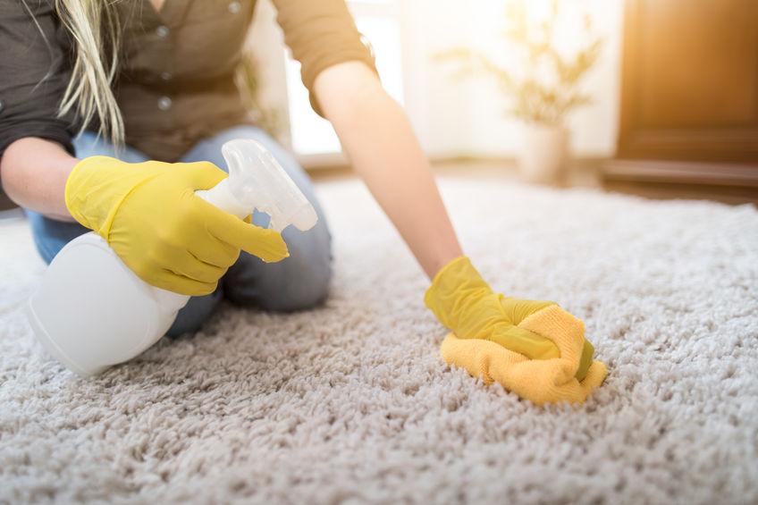 Professional Carpet Cleaners in Phoenix, AZ