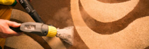 Commercial Carpet Cleaning Company in Phoenix & Peoria, AZ